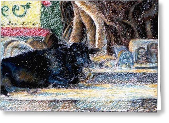 Bulls Pastels Greeting Cards - Banyan tree bull Greeting Card by Claudio  Fiori
