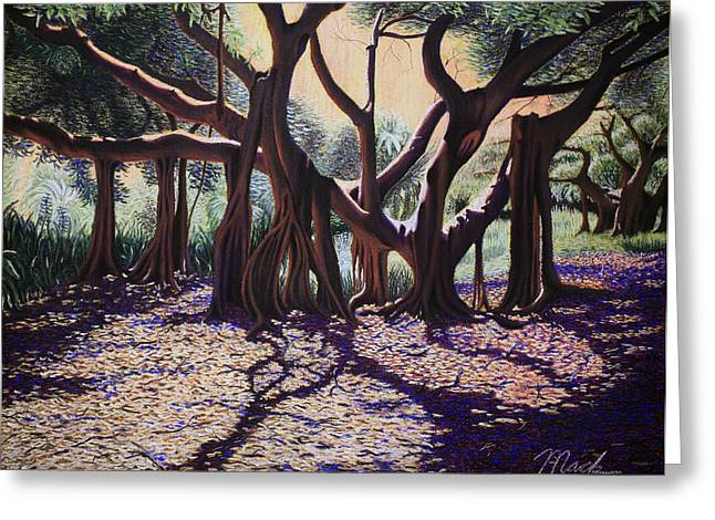 Miami Pastels Greeting Cards - Banyan Tree on Old Cutler Road Greeting Card by Stephen Mack