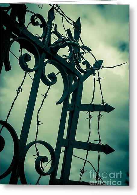 Barbed Wire Gate Greeting Card by Carlos Caetano