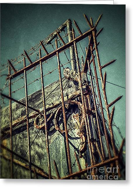 Industrial Concept Greeting Cards - Barbed Wire on Wall Greeting Card by Carlos Caetano