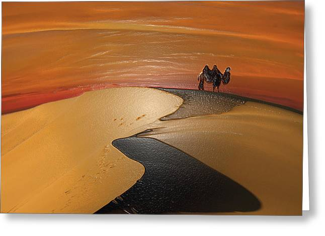 Sahara Sunlight Greeting Cards - Barchan dunes Greeting Card by Scott Mendell