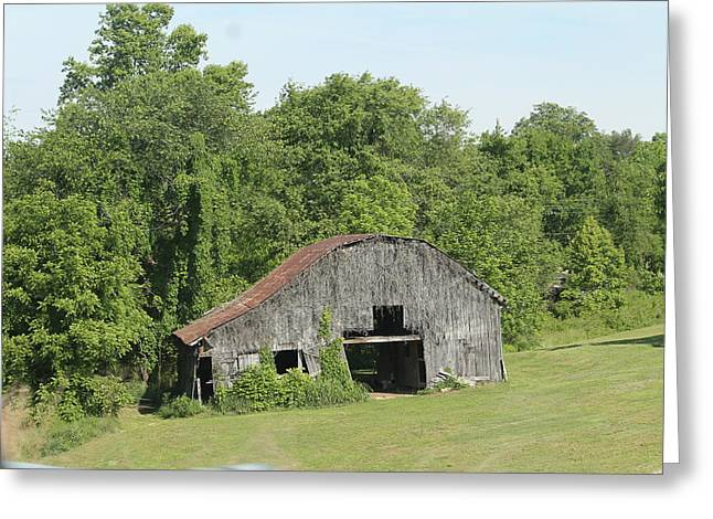 Red Roofed Barn Greeting Cards - Barn 4354 Greeting Card by Minnie Davis