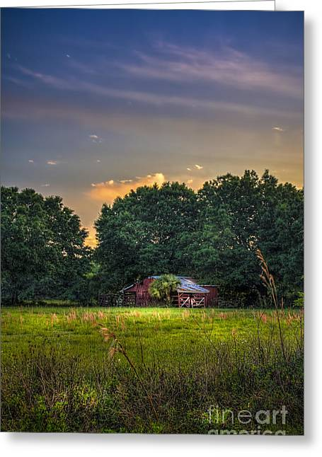 Fence Line Greeting Cards - Barn and Palmetto Greeting Card by Marvin Spates