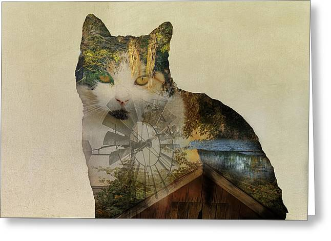 Red Roofed Barn Greeting Cards - Barn Cat Greeting Card by Larry Helms
