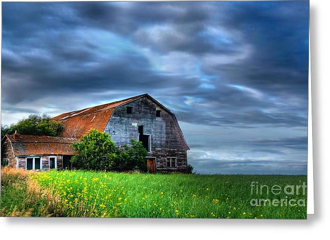 Barn Greeting Card by Ian MacDonald