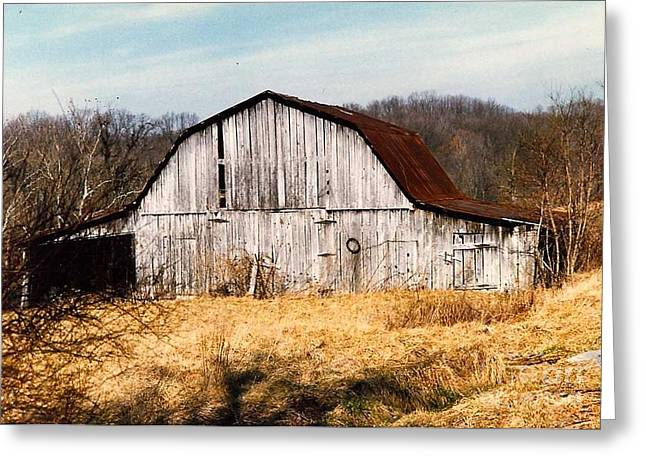 Tin Roof Greeting Cards - barn in Kentucky no 55 Greeting Card by Dwight Cook