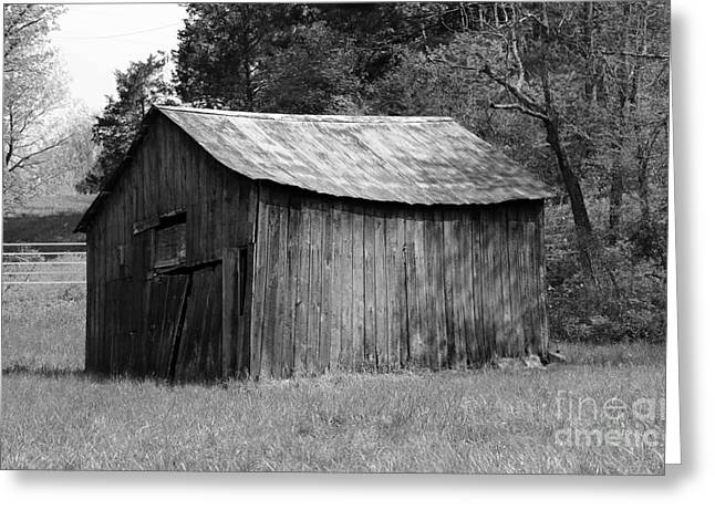 Shack Greeting Cards - Barn in Kentucky no 56 Greeting Card by Dwight Cook