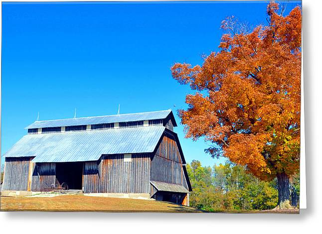 Produce Something Good Greeting Cards - Barn In The Fall  Greeting Card by Brittany H