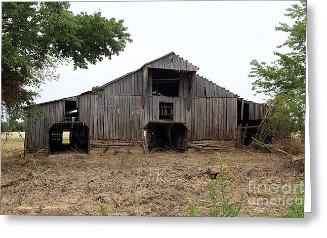 Tennessee Farm Greeting Cards - Barn in TN no 6 Greeting Card by Dwight Cook