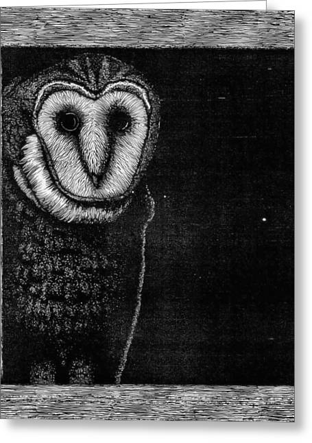 Barn Pen And Ink Greeting Cards - Barn Owl Greeting Card by Wayne Paulin