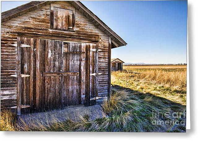 Fort Collins Greeting Cards - Barn wood Greeting Card by Keith Ducker