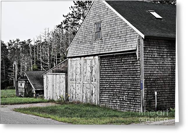 Maine Agriculture Greeting Cards - Barns of Time Greeting Card by Marcia Lee Jones