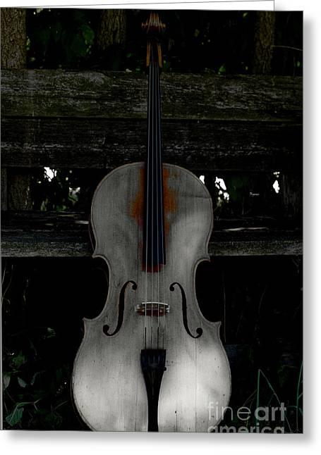 Steven Digman Greeting Cards - Barnyard Cello Greeting Card by Steven  Digman