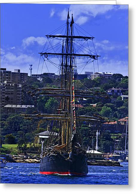 Tall Ships Greeting Cards - Barque James Craig Cruising Sydney Harbour Greeting Card by Miroslava Jurcik