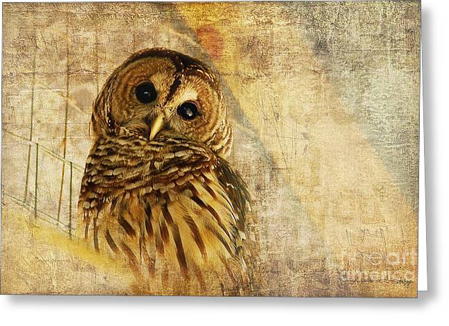 Golds Digital Art Greeting Cards - Barred Owl Greeting Card by Lois Bryan
