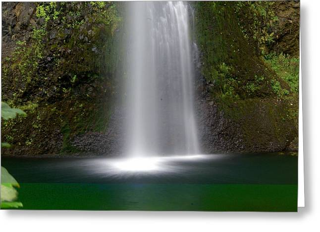 Marty Koch Greeting Cards - Base of the Falls Greeting Card by Marty Koch