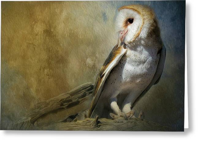 Bashful Barn Owl Greeting Card by Teresa Wilson