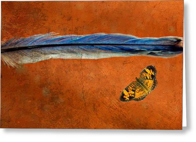 Checkerspot Greeting Cards - Basic Elements of Flight Bluebird Gift 3 Greeting Card by Kathy Barney