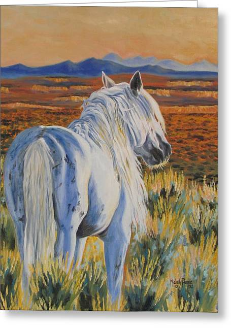 Melody Perez Greeting Cards - Basin Glory Greeting Card by Melody Perez