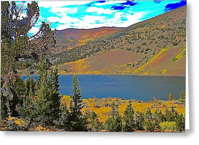 Whitebarks Greeting Cards - Saddlebag Lake Whitebark Pines Sierra Nevada Greeting Card by Scott L Holtslander