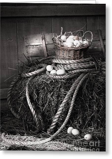 Basket Of Eggs On A Bale Of Hay Greeting Card by Sandra Cunningham