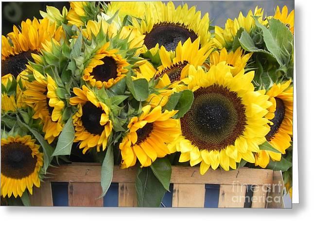 Basket Of Sunflowers Greeting Card by Chrisann Ellis