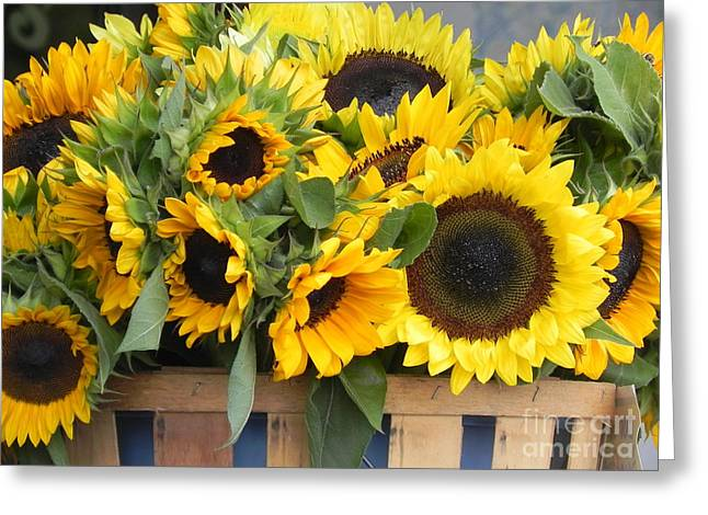 Recently Sold -  - Flower Still Life Prints Greeting Cards - Basket Of Sunflowers Greeting Card by Chrisann Ellis