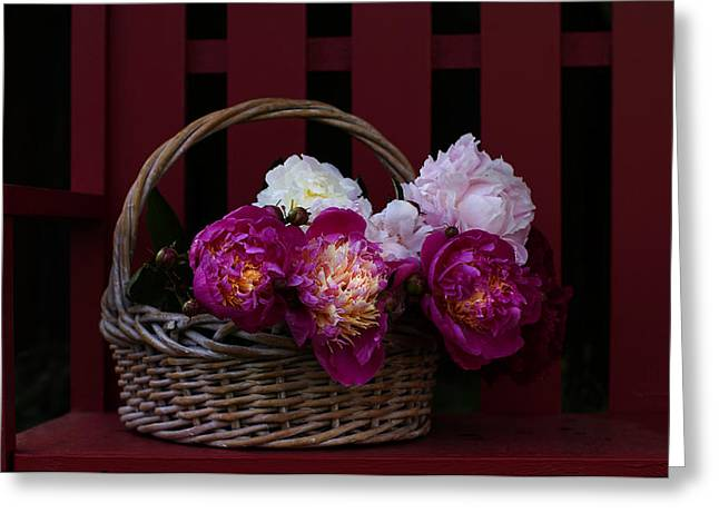 Peony Greeting Cards - Basket on the Bench Greeting Card by Rebecca Cozart