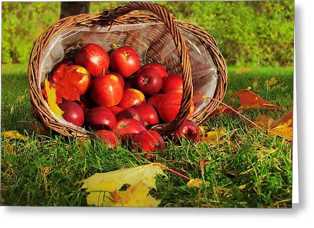 Fall Grass Greeting Cards - Basket with apples Greeting Card by Helen Barth