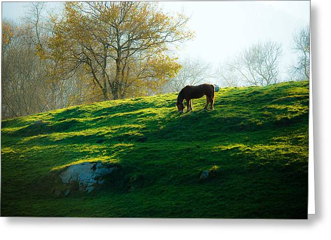 Pairs Greeting Cards - Basque countryside Greeting Card by Antonio Costa