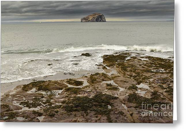 Bass Rock Greeting Card by Stephen Smith