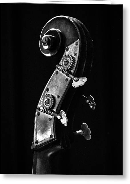 Doghouse Greeting Cards - Bass Violin Greeting Card by Julia Wilcox