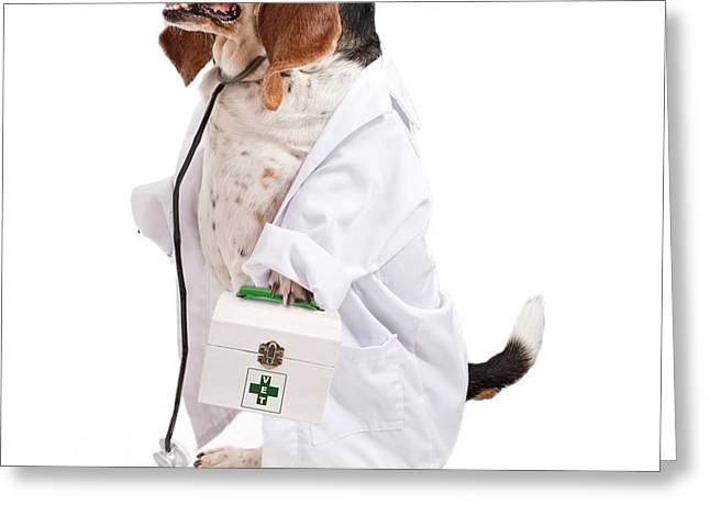 Basset Hound Dog Dressed as a Veterinarian Greeting Card by Susan  Schmitz