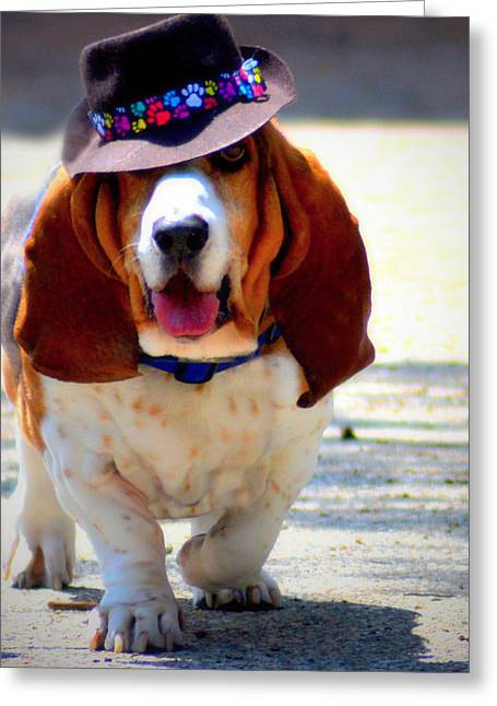Basset Hound Greeting Cards Greeting Cards - Basset Hound  Greeting Card by Marysue Ryan