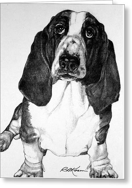 Kaelin Drawings Greeting Cards - Basset Hound Greeting Card by Roy Kaelin