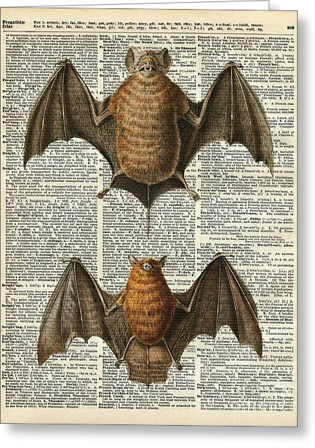 Art Book Greeting Cards - Bat Anatomy Greeting Card by Jacob Kuch
