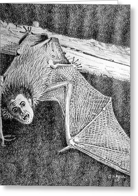 Batman Drawings Greeting Cards - Bat Man Greeting Card by Arline Wagner