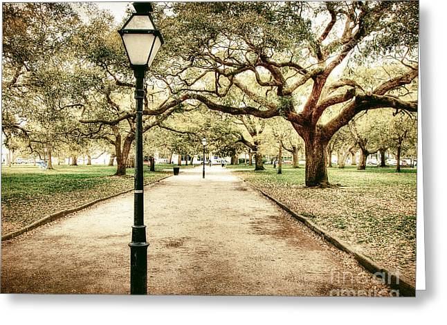 Battery Park Greeting Cards - Battery Park Charelston Greeting Card by Emily Enz