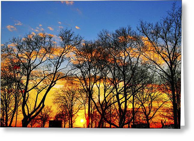 Battery Park Greeting Cards - Battery Park Sunset Greeting Card by Randy Aveille