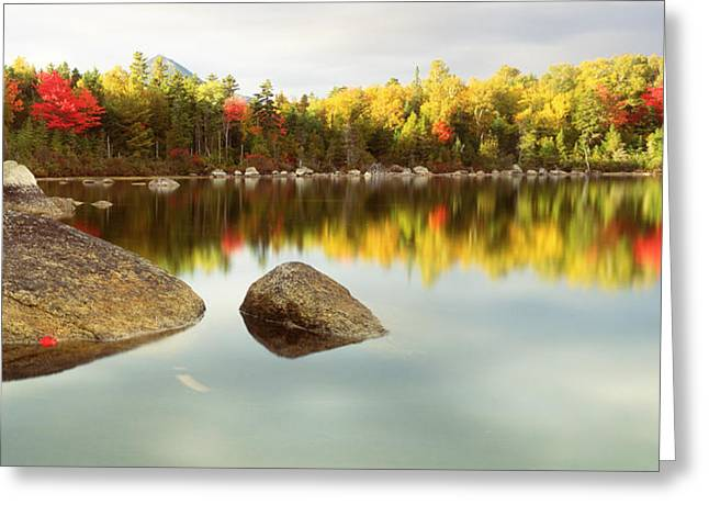 Maine Shore Greeting Cards - Baxter State Park Me Greeting Card by Panoramic Images