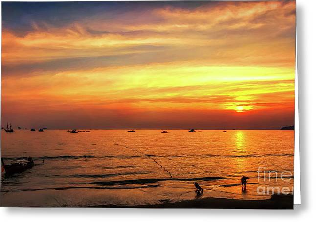 Bay Sunset Greeting Card by Adrian Evans