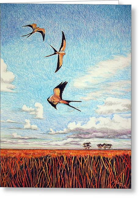 Kite Greeting Cards - Bayou Ballet Greeting Card by Suzanne McKee