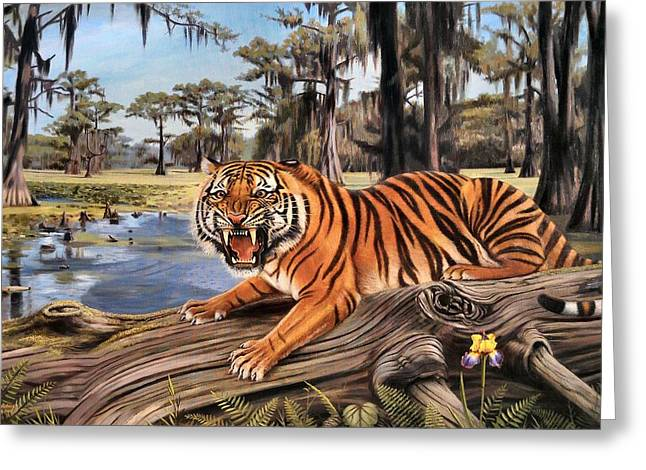 Mike The Tiger Greeting Cards - Bayou Mike Of Louisiana Greeting Card by Mike Roberts