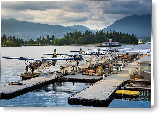 Bc Seaplanes Greeting Card by Inge Johnsson