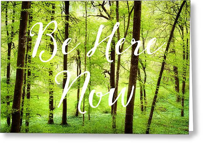 Be Here Now Green Forest In Spring Greeting Card by Matthias Hauser