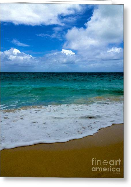 Beach Beauty Greeting Card by Cheryl Young