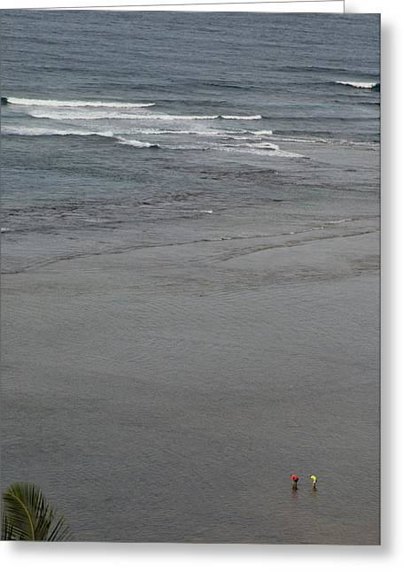 Senior Adult Greeting Cards - Beach Combers Explore The Shallows Greeting Card by Bill Hatcher