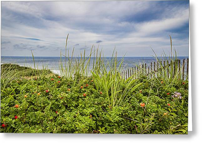 Storm Clouds Cape Cod Greeting Cards - Beach Garden Greeting Card by Shelley Vandegrift