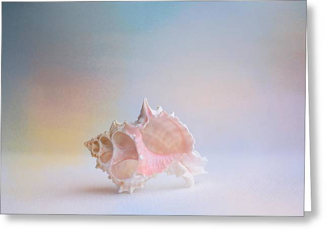 Sea Shell Art Greeting Cards - Beach Memories 3 Greeting Card by Jai Johnson