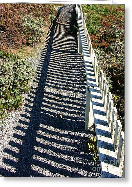 Half Moon Bay Greeting Cards - Beach Path Greeting Card by Carol Groenen